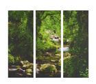 DEKOPANEEL - Multicolor, LIFESTYLE, Holz/Papier (80/90/2,60cm) - Eurographics