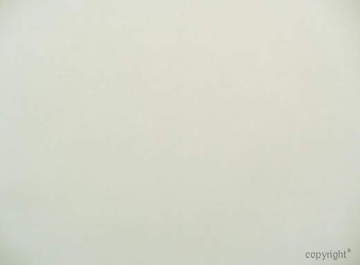 STORE per lfm - Creme, Basics, Textil (300cm) - Esposa
