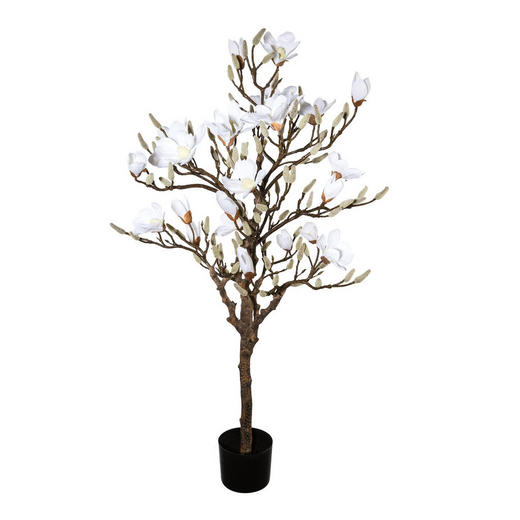 KUNSTBLUME Magnolie - Weiß/Braun, Trend, Kunststoff (120cm)