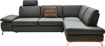 WOHNLANDSCHAFT in Leder Schlammfarben  - Schlammfarben/Alufarben, Design, Leder/Metall (283/213cm) - Dieter Knoll