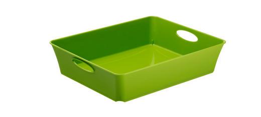 BOX Kunststoff Grün - Grün, Basics, Kunststoff (26.4/21.2/6cm)