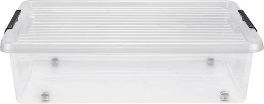 BOX MIT DECKEL 57/39/17 cm - Transparent, Basics, Kunststoff (57/39/17cm) - Plast 1