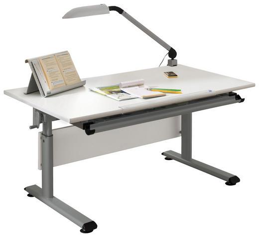 JUGENDSCHREIBTISCH - Silberfarben/Weiß, Basics, Holzwerkstoff/Metall (120/70cm) - Paidi