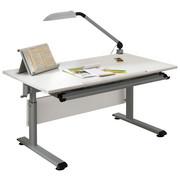 JUGENDSCHREIBTISCH Silberfarben, Weiß - Silberfarben/Weiß, Design, Metall (120/70cm) - PAIDI