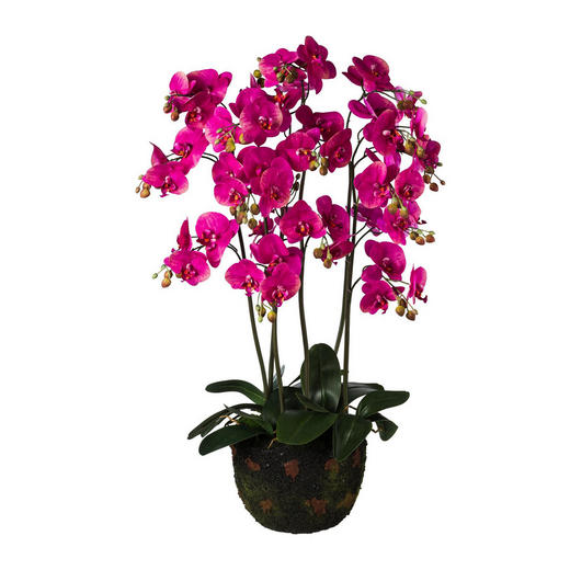 KUNSTBLUME Orchidee - Magenta/Braun, Trend, Kunststoff (95cm)