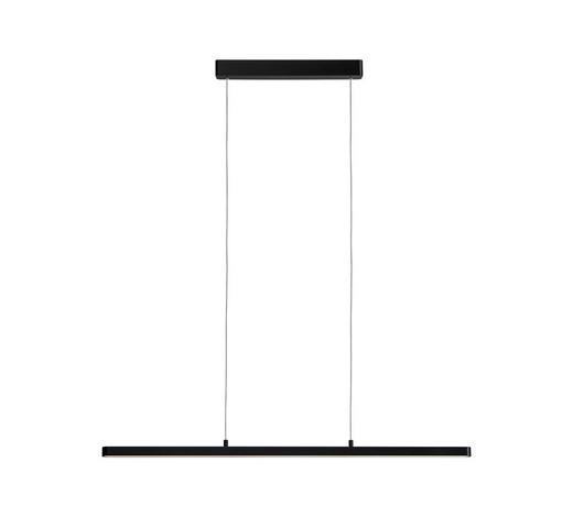 LED-HÄNGELEUCHTE - Schwarz, Design, Kunststoff/Metall (100/150cm)