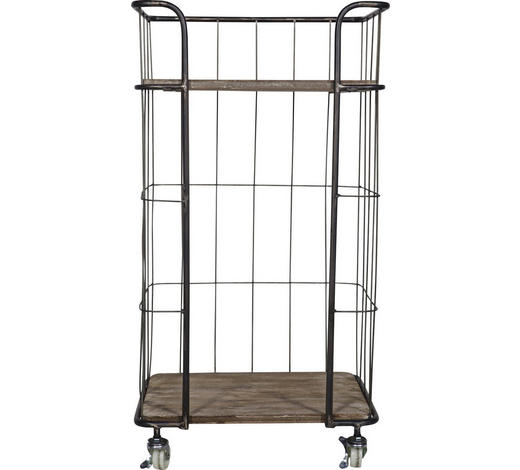 REGAL Altholz massiv Braun, Silberfarben  - Silberfarben/Braun, Trend, Holz/Metall (47,5/88,5/37,5cm) - Carryhome