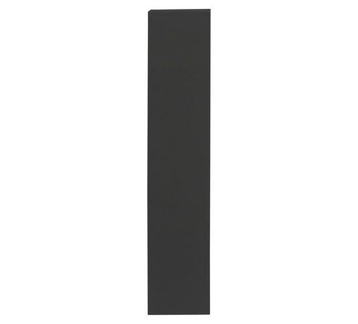 HÄNGEELEMENT in Anthrazit - Anthrazit, Design, Holzwerkstoff (139/29/31cm) - Carryhome