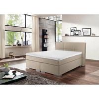 Boxspringbett 'Modern Premium' 120/200 cm  in Schlammfarben - Schlammfarben/Silberfarben, Design, Holzwerkstoff/Textil (120/200cm) - Novel