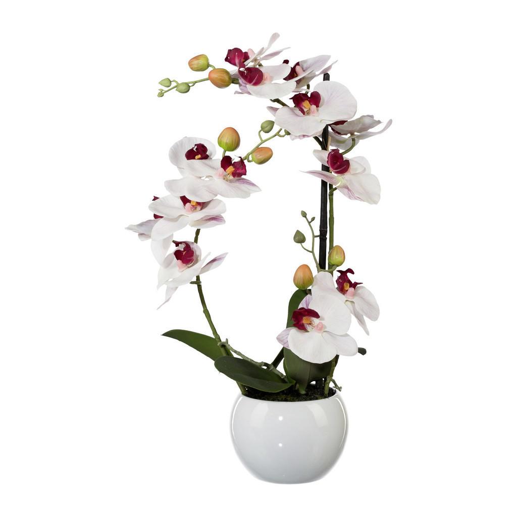 XXXLutz Kunstblume orchidee