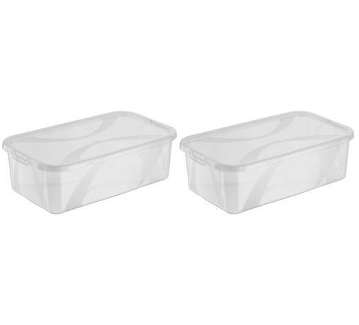 BOX S VÍKEM, 2x 5l l - průhledné, Basics, umělá hmota (34/20/11cm) - Rotho