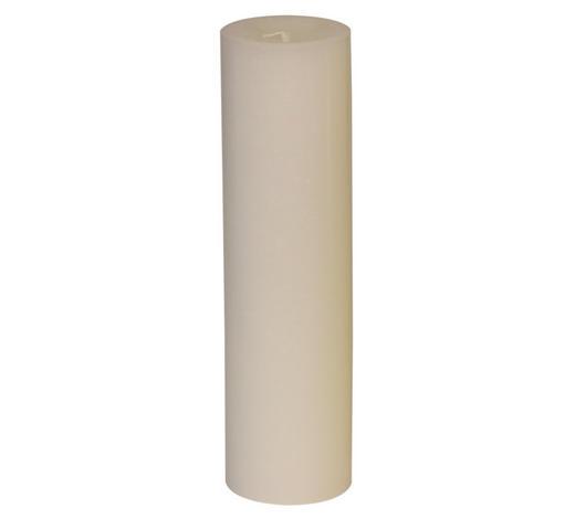 STUMPENKERZE 6,8/25 cm  - Weiß, Basics (6,8/25cm) - Steinhart