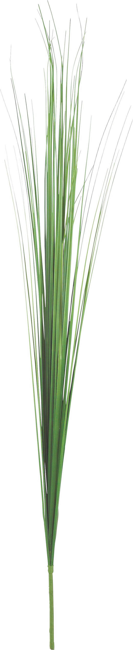 DEKOGRAS - Grün, Basics, Kunststoff/Textil (115cm)