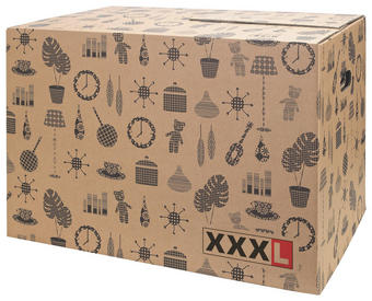 SELITVENI KARTON - rjava, Basics, karton (//null) - Boxxx