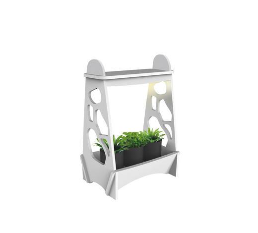 LED-Mini-Gewächshaus - Klar/Weiß, Design, Kunststoff (36/24/50,3cm)