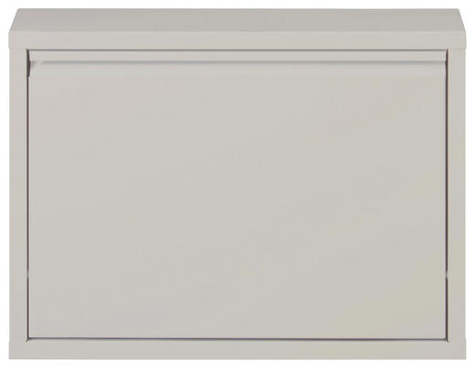 SCHUHKIPPER lackiert Grau - Grau, Design, Metall (50/37/15cm) - Carryhome