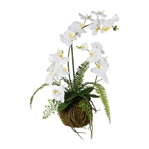 KUNSTBLUME Orchidee - Weiß/Grün, Trend, Kunststoff (65cm)