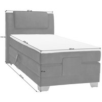 BOXSPRINGBETT 100 cm   x 200 cm   in Textil Dunkelbraun - Dunkelbraun/Silberfarben, KONVENTIONELL, Kunststoff/Textil (100/200cm) - Esposa