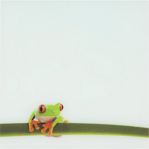 MEMOBOARD - Multicolor, Basics, Glas/Metall (50/50cm) - EUROGRAPHICS