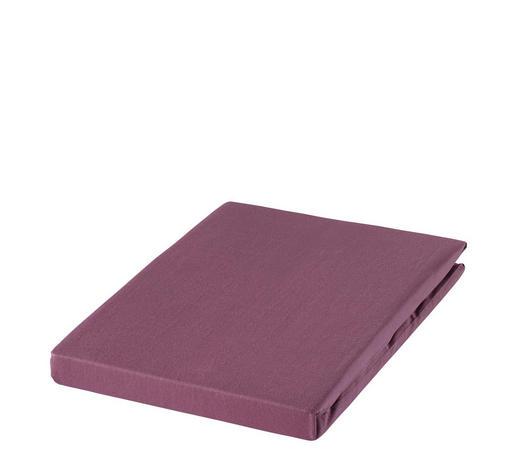 SPANNBETTTUCH Zwirn-Jersey Aubergine, Magnolie bügelfrei, für Wasserbetten geeignet  - Aubergine/Magnolie, Basics, Textil (100/200cm) - Estella