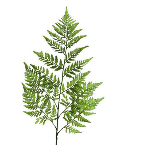 DEKORAČNÍ VĚTEV - zelená, Basics, umělá hmota (78cm)