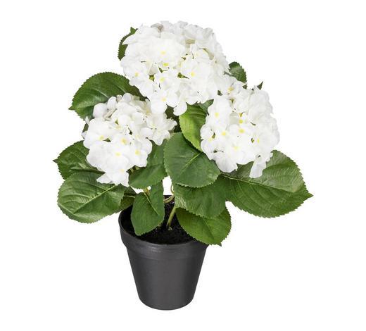 KUNSTBLUME Hortensie  - Weiß, Kunststoff (40cm)