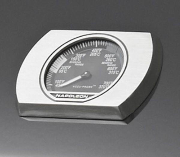 PLINSKI ROŠTILJ - boje srebra/crna, Konvencionalno, metal (130/122/64cm) - NAPOLEON