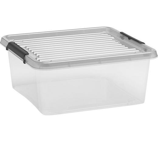 BOX MIT DECKEL 39/16,5/39 cm - Klar, KONVENTIONELL, Kunststoff (39/16,5/39cm) - Plast 1