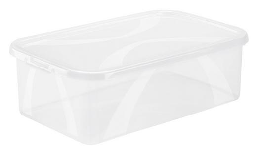 BOX MIT DECKEL 34,4/20,2/10,6 cm - Naturfarben, KONVENTIONELL, Kunststoff (34,4/20,2/10,6cm) - Rotho