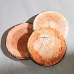 Stuhlkissen Wood Ø 38 cm - Braun, MODERN, Textil (38/3cm) - Luca Bessoni