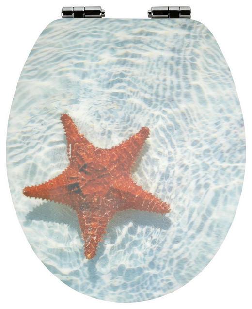 WC-SITZ - Multicolor, Basics, Kunststoff (38,2/6/45cm) - Celina