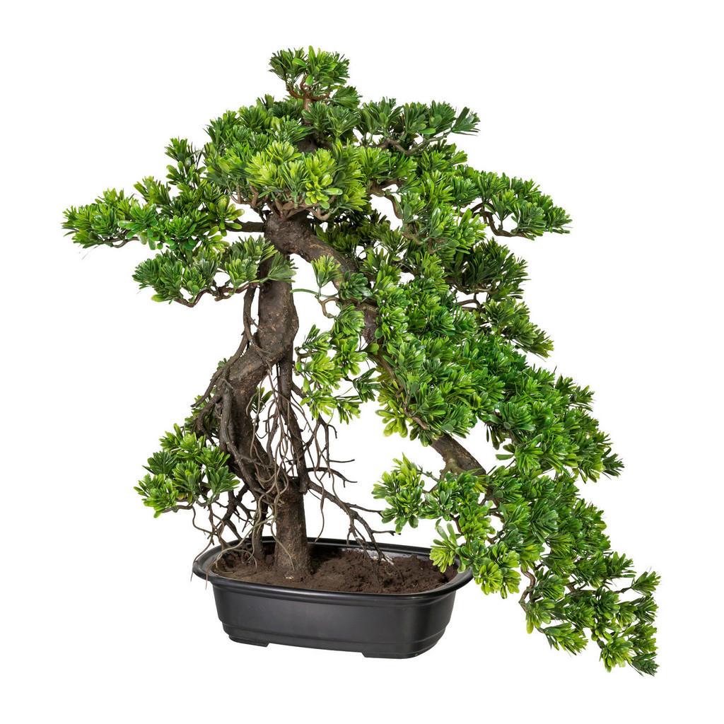 XXXLutz Kunstpflanze bonsai
