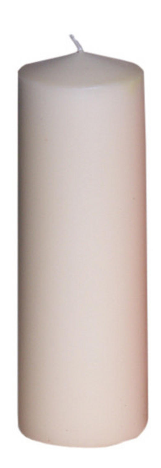 STUMPENKERZE 6,7/20 cm - Creme, Basics (6,7/20cm)