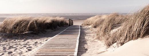Landschaft & Natur, Strand & Meer Glasbild