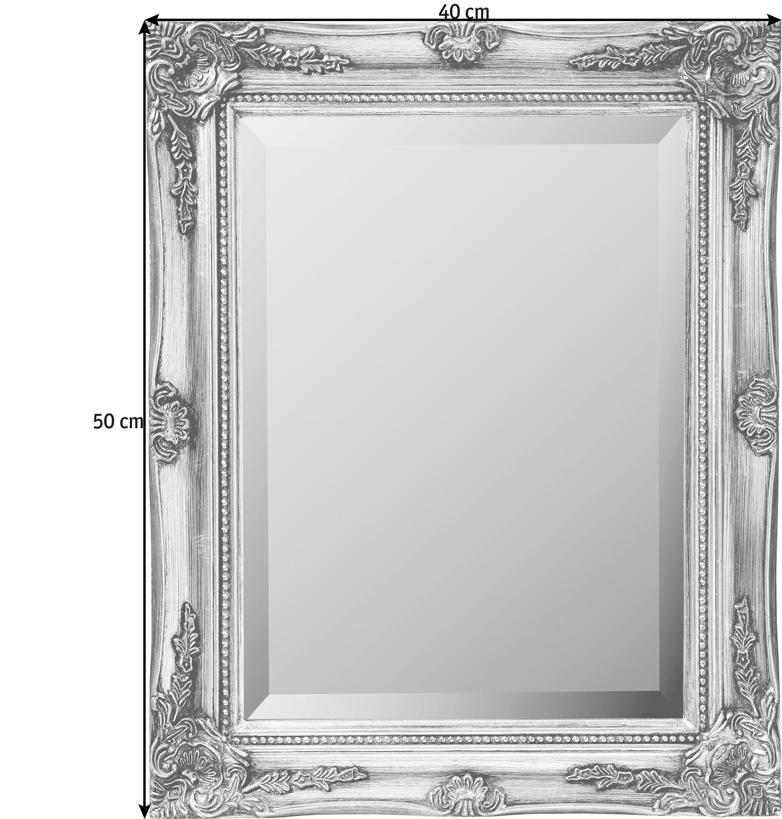 SPIEGEL - Silberfarben, LIFESTYLE, Holz (40/50cm) - LANDSCAPE