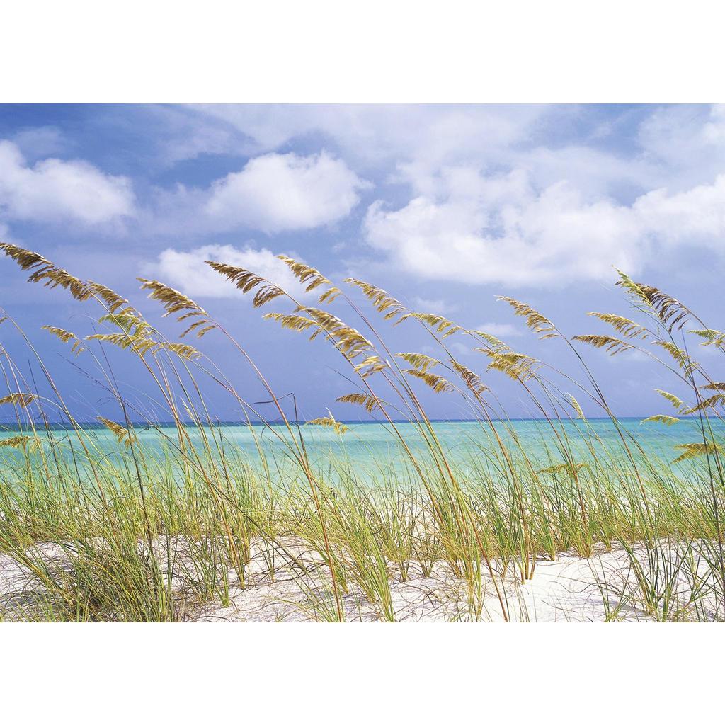Komar Fototapete Ocean Breeze