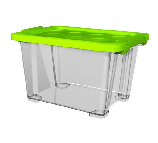 BOX MIT DECKEL 39,3/28,3/23 cm  - Transparent/Grün, KONVENTIONELL, Kunststoff (39,3/28,3/23cm) - Rotho