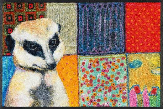 FUßMATTE 50/75 cm Graphik Multicolor - Multicolor, Basics, Kunststoff/Textil (50/75cm) - Esposa