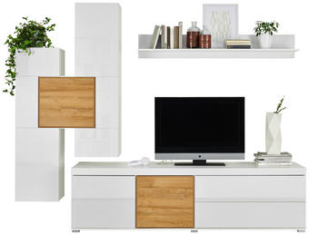 WOHNWAND Eichefarben, Weiß - Eichefarben/Alufarben, Design, Holzwerkstoff/Kunststoff (255/200/51cm) - Ti`me