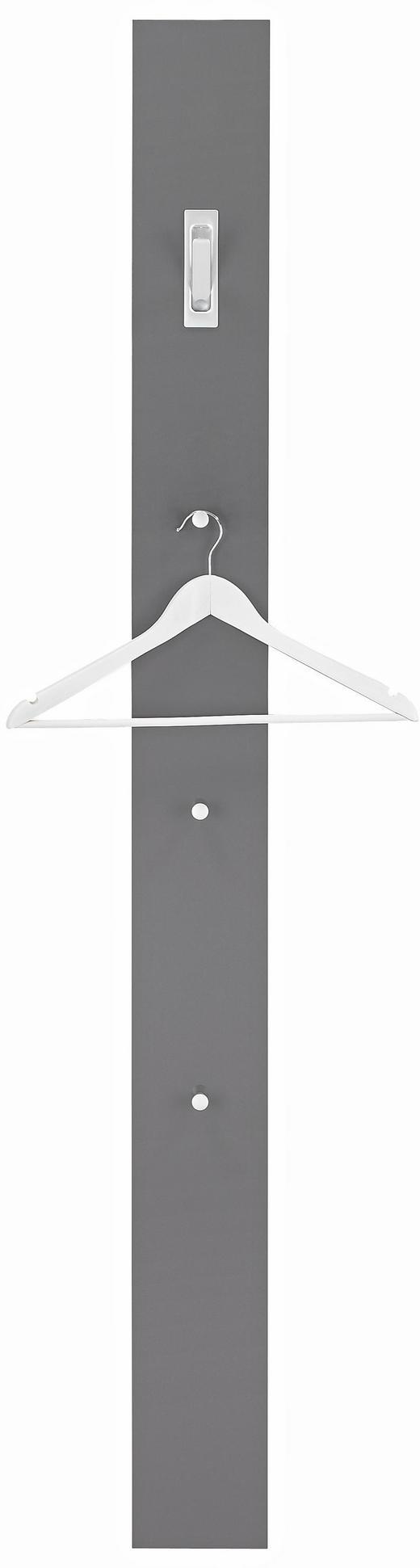 GARDEROBENPANEEL Anthrazit - Anthrazit, Design, Kunststoff (15/170/2,5cm)