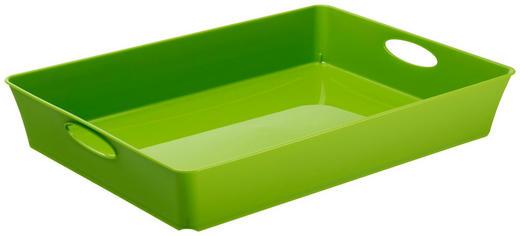 TABLETT Kunststoff - Grün, Basics, Kunststoff (37.5/26.6/6cm)