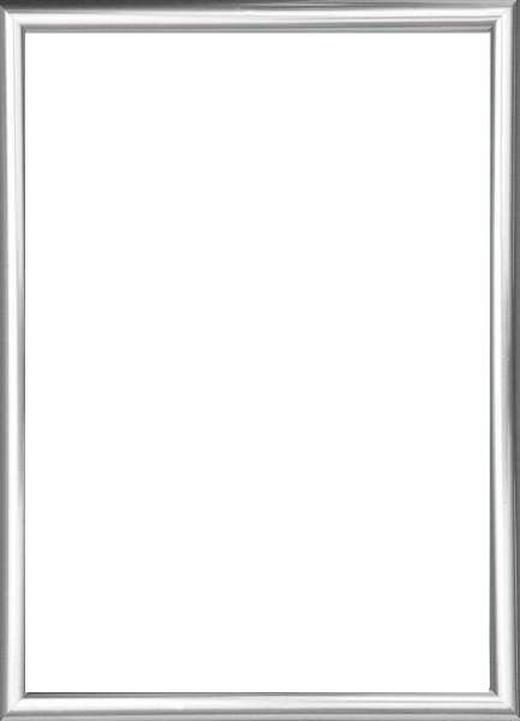 RÁM NA OBRAZY - barvy stříbra, Basics, umělá hmota/sklo (72/52/2cm)