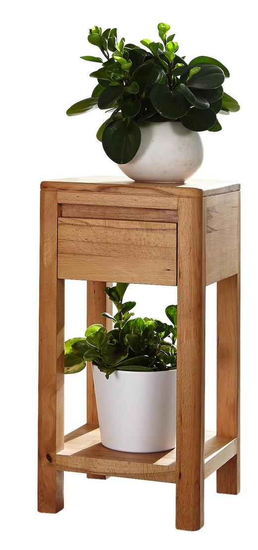 BLUMENSÄULE Holz Kernbuche vollmassiv - Buchefarben, Design, Holz (30/60/30cm) - Carryhome