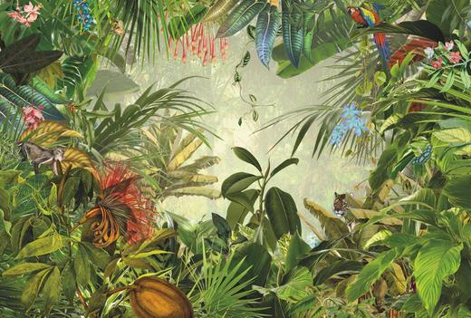 VLIESTAPETE - Multicolor, Papier (368/248/cmcm)