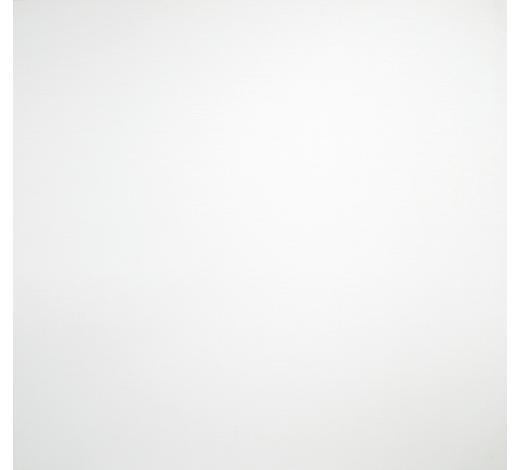 ZÁCLONA  (běžný metr) - bílá, Basics, textilie (180cm) - Esposa