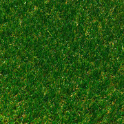 RASENTEPPICH - Grün, KONVENTIONELL, Textil (200cm) - Ambia Garden