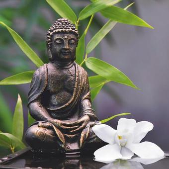 Blumen, Buddha, Zen GLASBILD - Multicolor, Basics, Glas (30/30/2cm) - EUROGRAPHICS