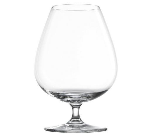 SKLENICE NA KOŇAK - čiré, Konvenční, sklo (37,3/25,6/17,9cm) - Schott Zwiesel
