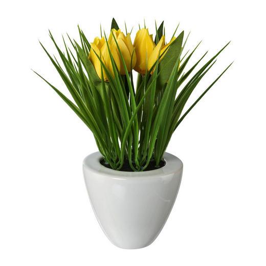 KUNSTBLUME Tulpe - Gelb/Grün, Trend, Kunststoff (26cm)