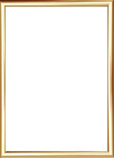 BILDERRAHMEN in Goldfarben - Goldfarben, Basics, Glas/Kunststoff (61/81cm)